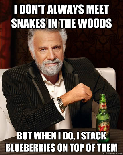 i dont always meet snakes in the woods but when i do i sta - The Most Interesting Man In The World
