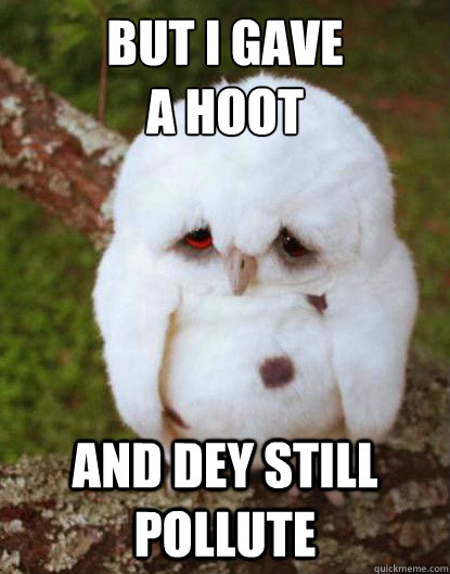 but i gave a hoot  - Depressed Baby Owl