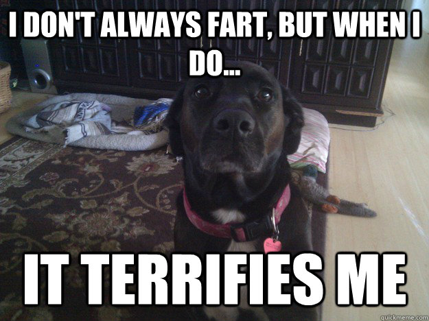 i dont always fart but when i do it terrifies me - Most Interesting Dog in the World