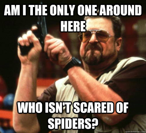 am i the only one around here who isnt scared of spiders - Am I The Only One Around Here