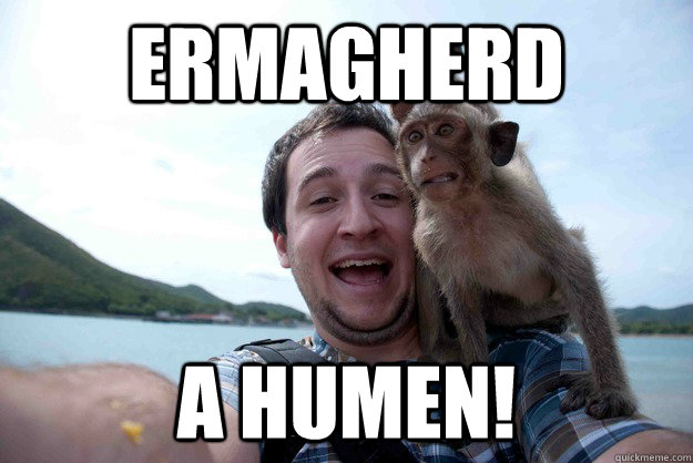 ermagherd a humen - funny monkey