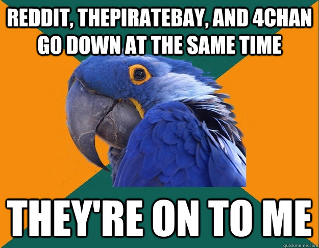 reddit thepiratebay and 4chan go down at the same time the - Paranoid Parrot