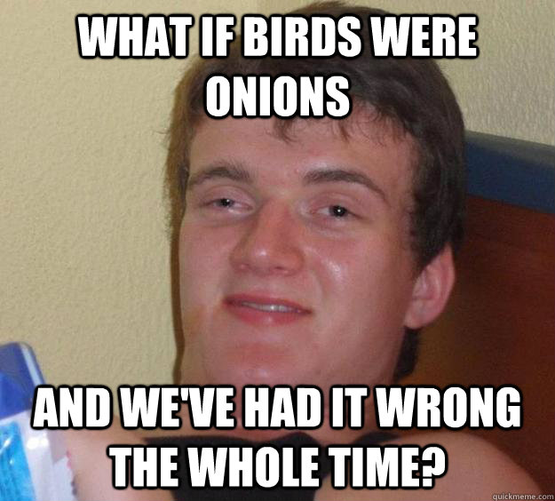 what if birds were onions and weve had it wrong the whole t - 10 Guy