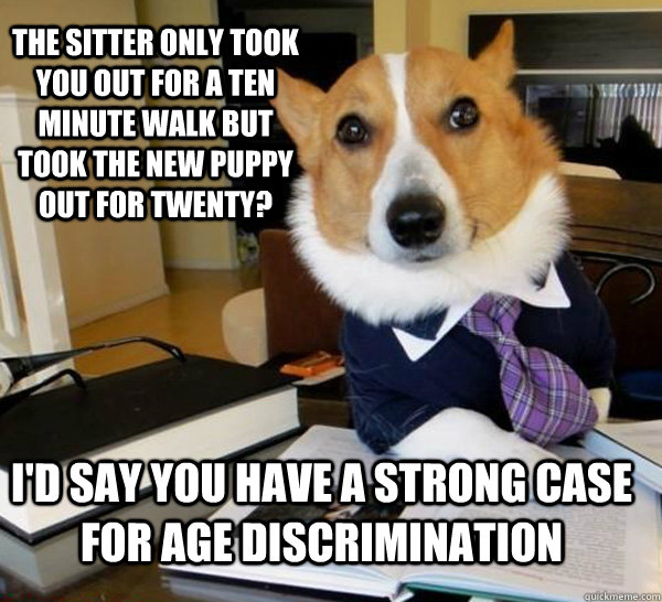 the sitter only took you out for a ten minute walk but took  - Lawyer Dog