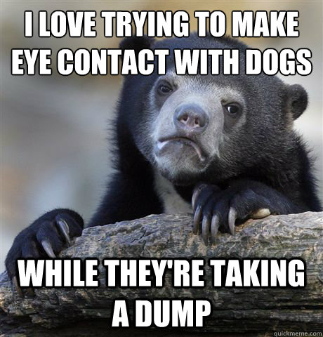 i love trying to make eye contact with dogs while theyre ta - Confession Bear