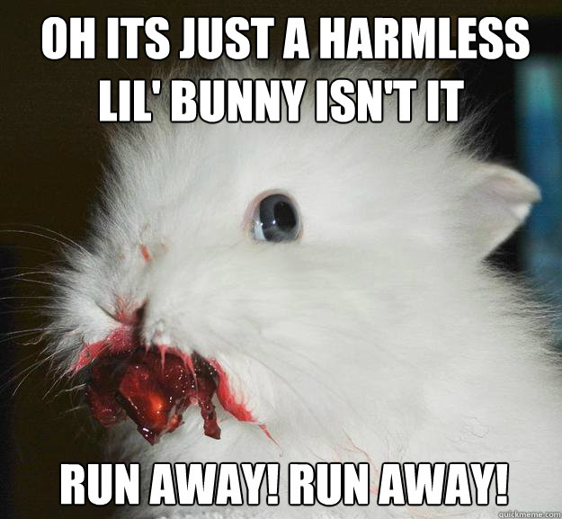 oh its just a harmless lil bunny isnt it run away run a -