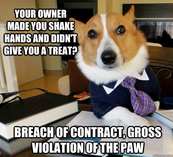 your owner made you shake hands and didnt give you a treat - Lawyer Dog