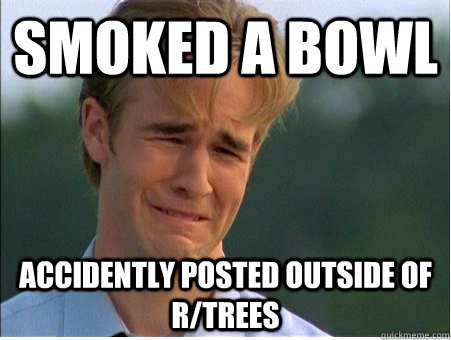 smoked a bowl accidently posted outside of rtrees - 1990s Problems