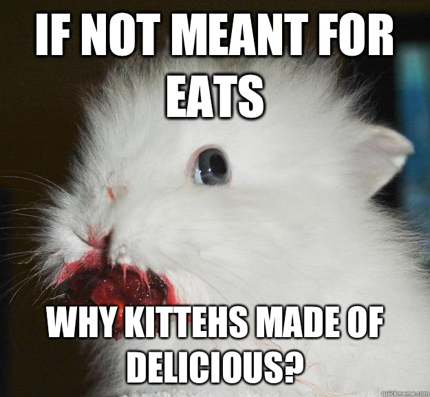 If not meant for eats Why kittehs made of delicious - Murder Bunny
