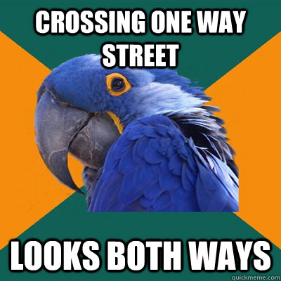 crossing one way street looks both ways - Paranoid Parrot