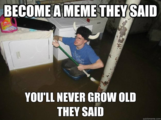 become a meme they said youll never grow old they said - Laundry viking