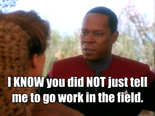 i know you did not just tell me to go work in the field - Sisko Paradise