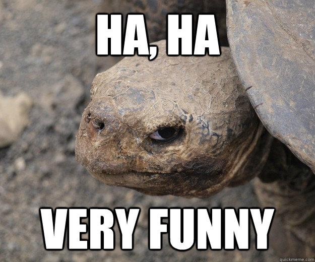 Hahaha Not Funny Meme : Ha very funny