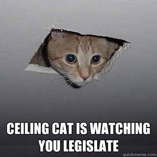 ceiling cat is watching you legislate - Ceiling Cat
