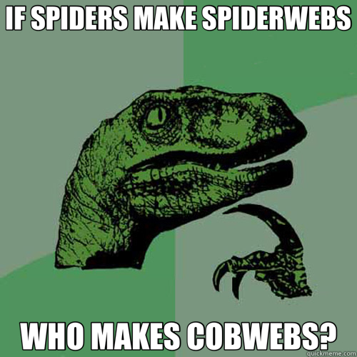 IF SPIDERS MAKE SPIDERWEBS WHO MAKES COBWEBS? - Philosoraptor