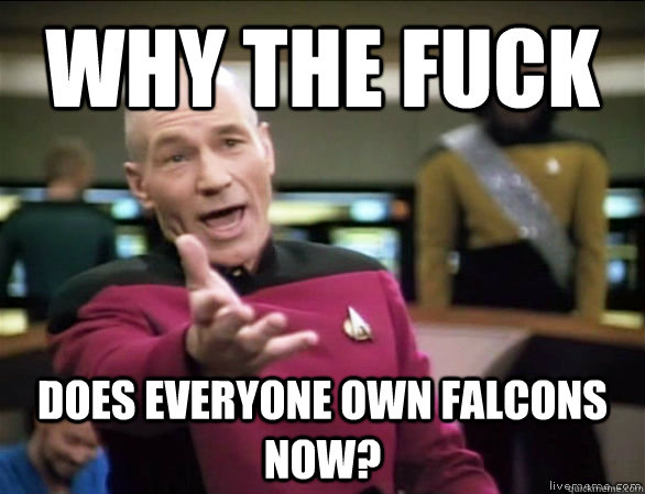 why the fuck does everyone own falcons now - Annoyed Picard HD