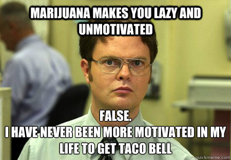 marijuana makes you lazy and unmotivated false i have never - Schrute