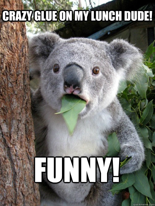 funny crazy glue on my lunch dude - koala bear