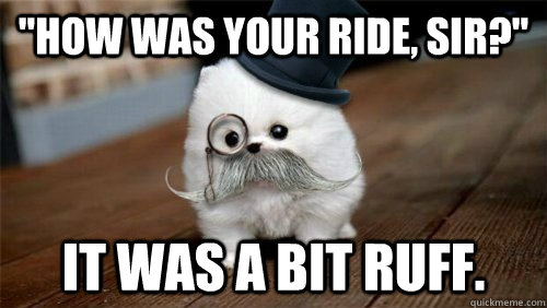 how was your ride sir it was a bit ruff - Sir Geoffrey Puppington