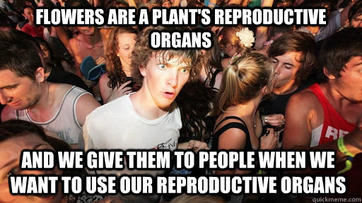 flowers are a plants reproductive organs and we give them t - Sudden Clarity Clarence