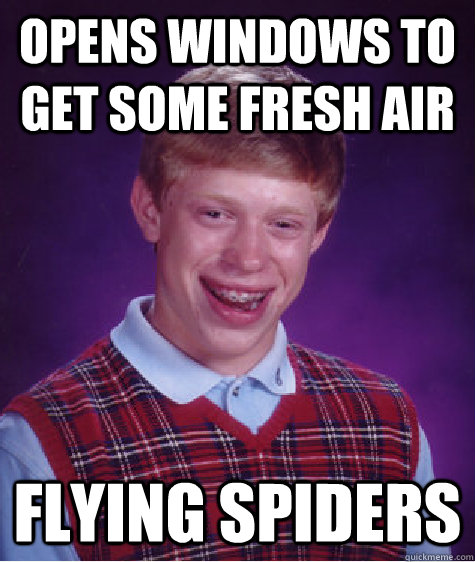 opens windows to get some fresh air flying spiders - Bad Luck Brian