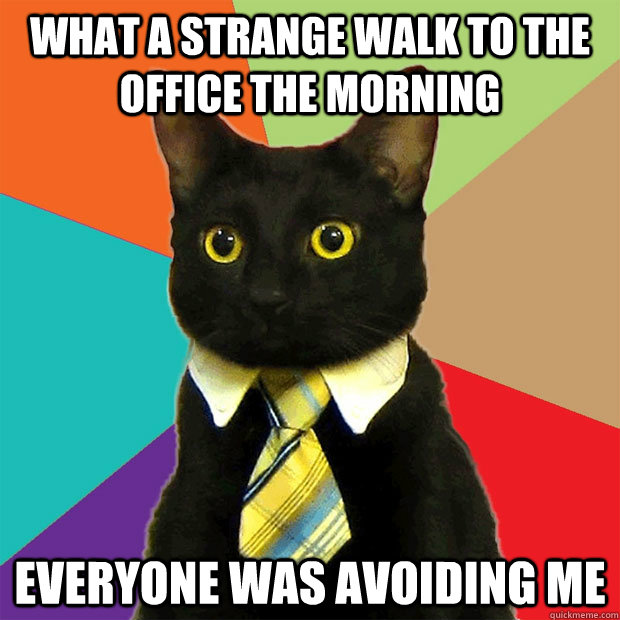 what a strange walk to the office the morning everyone was a - Business Cat