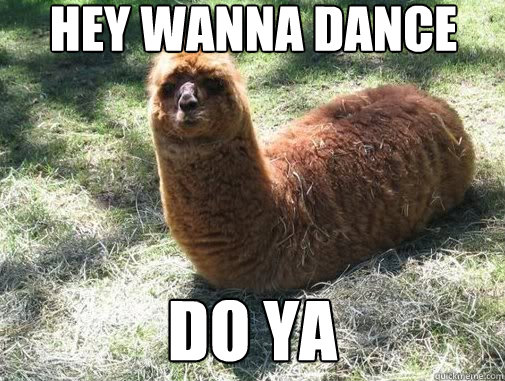 hey wanna dance do ya - Alpacapillar
