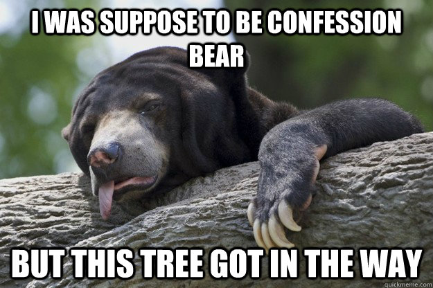 i was suppose to be confession bear but this tree got in the - Excuses Bear