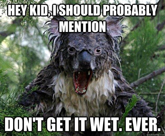 Funny Koala Memes Koal...