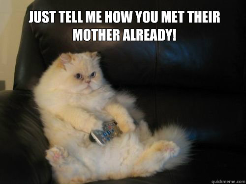 just tell me how you met their mother already - Disapproving TV Cat