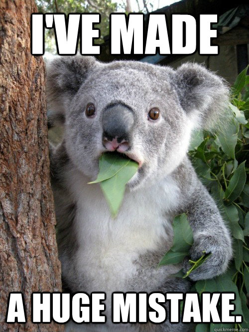 ive made a huge mistake  - Surprised Koala