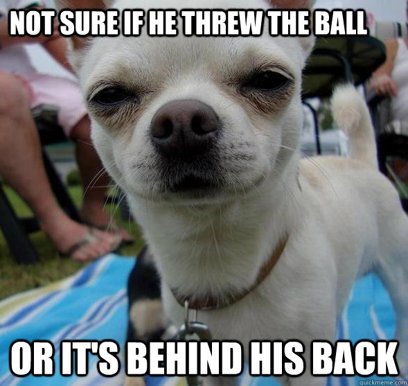 not sure if he threw the ball or its behind his back - Futurama Fry Dog