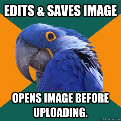 edits saves image opens image before uploading - Paranoid Parrot