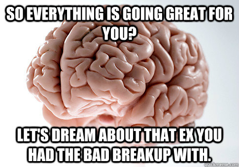 so everything is going great for you lets dream about that - Scumbag Brain