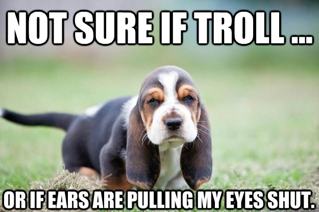 not sure if troll or if ears are pulling my eyes shut - wienertroll