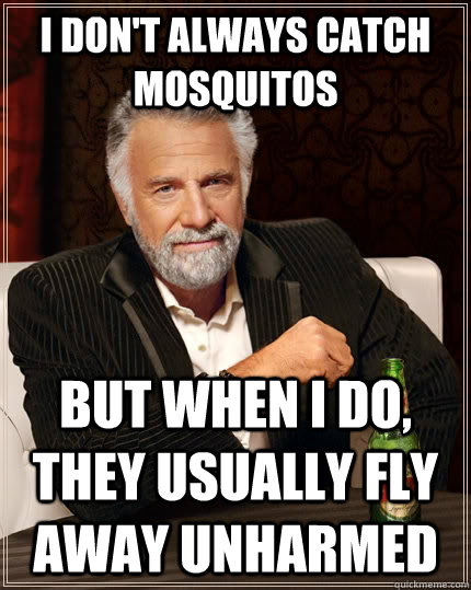 i dont always catch mosquitos but when i do they usually f - The Most Interesting Man In The World