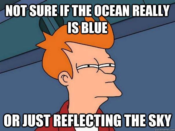 not sure if the ocean really is blue or just reflecting the  - Futurama Fry
