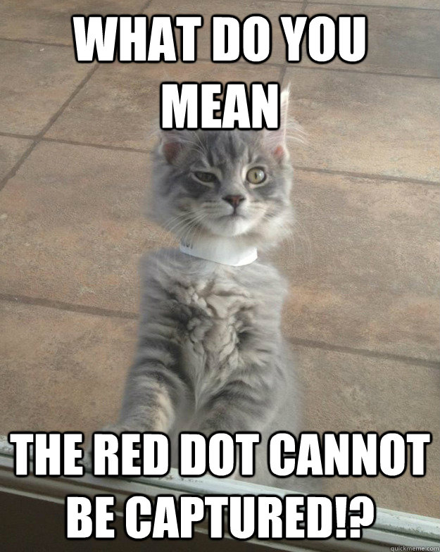 what do you mean the red dot cannot be captured - skeptical cat