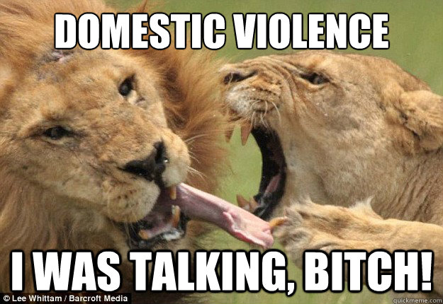 domestic violence i was talking bitch - Aggressive Females