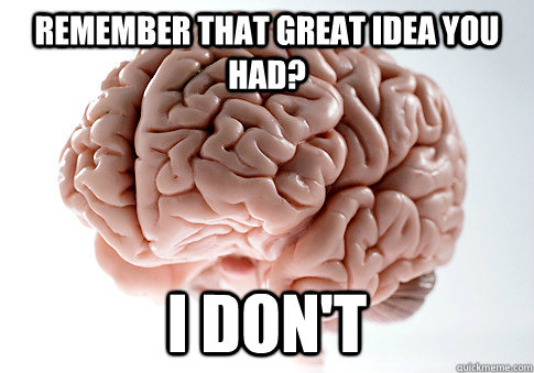 remember that great idea you had i dont - Scumbag Brain