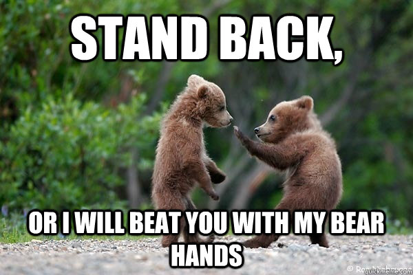 stand back or i will beat you with my bear hands - Karate Bear