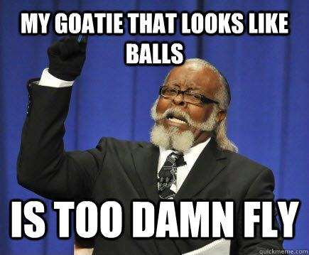 my goatie that looks like balls is too damn fly - Too Damn High