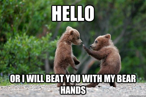 hello or i will beat you with my bear hands - Karate Bear