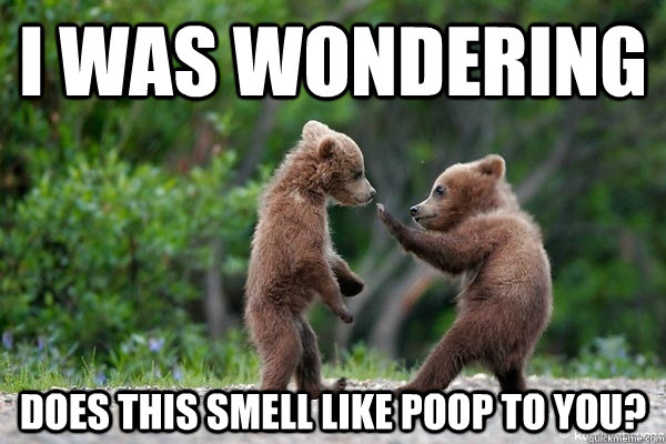 i was wondering does this smell like poop to you - Karate Bear