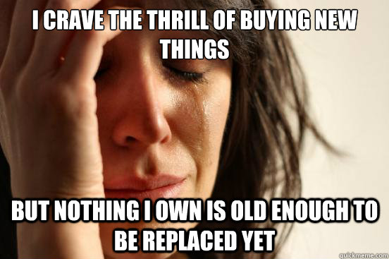 i crave the thrill of buying new things but nothing i own is - First World Problems