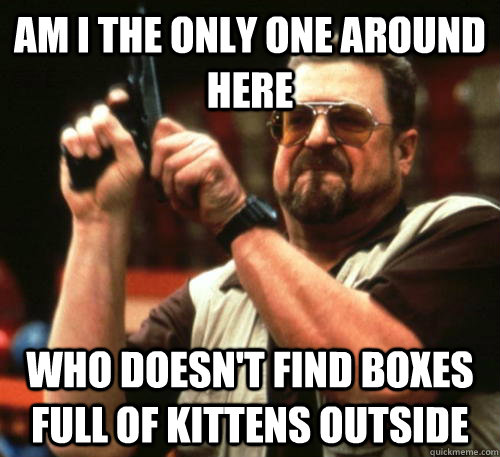 am i the only one around here who doesnt find boxes full of - Am I The Only One Around Here