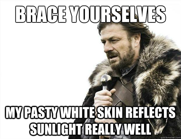 brace yourselves my pasty white skin reflects sunlight reall - Brace Yourselves - Borimir