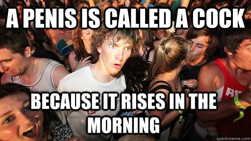 a penis is called a cock because it rises in the morning - Sudden Clarity Clarence