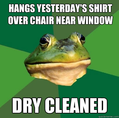 hangs yesterdays shirt over chair near window dry cleaned - Foul Bachelor Frog