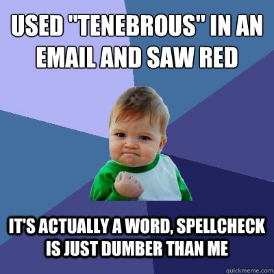 used tenebrous in an email and saw red its actually a wor - Success Kid